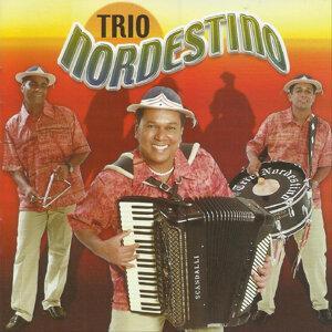 Trio Nordestino 歌手頭像