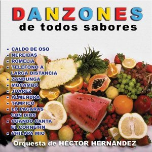 Orquesta De Hector Hernandez 歌手頭像