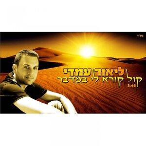 Lior Amedi 歌手頭像