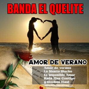 Banda El Quelite 歌手頭像