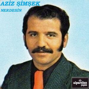 Aziz Şimşek 歌手頭像