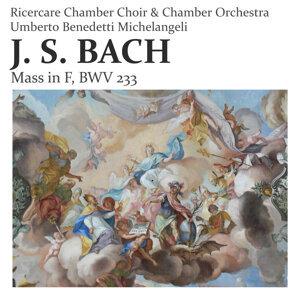 Ricercare Chamber Choir, Ricercare Chamber Orchestra, Umberto Benedetti Michelangeli 歌手頭像