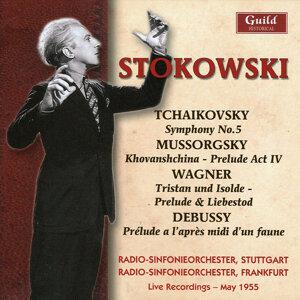 Radio-Sinfonieorchester Stuttgart & Radiosymphonieorchester Frankfurt - Leopold Stokowski 歌手頭像