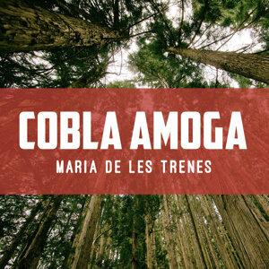 Cobla Amoga 歌手頭像