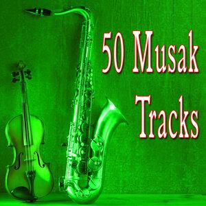 Background Music Soundscape 歌手頭像