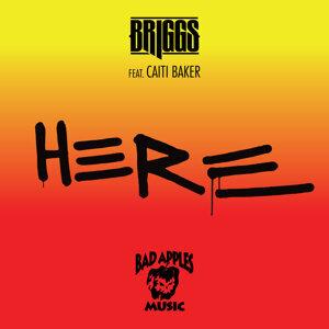 Briggs 歌手頭像