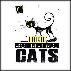 """""""CATS"""" Orchestra 歌手頭像"""