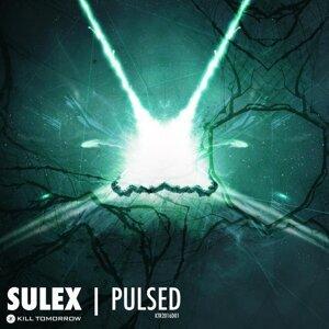Sulex 歌手頭像
