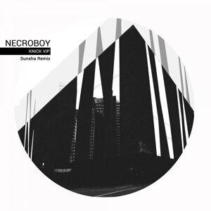 Necroboy