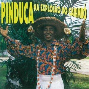 Pinduca 歌手頭像