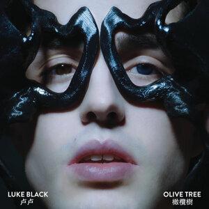 Luke Black 歌手頭像