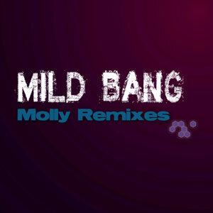 Mild Bang 歌手頭像