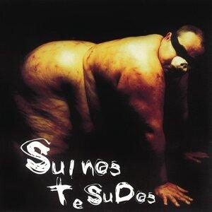 Suinos Tesudos 歌手頭像