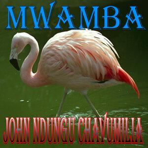 John Ndungu Chavumilia 歌手頭像