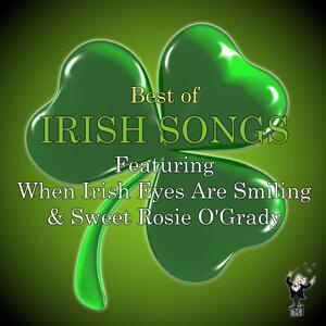 Irish Folk Band 歌手頭像