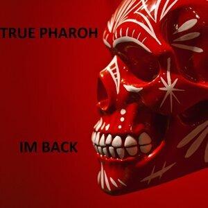 True Pharaoh 歌手頭像