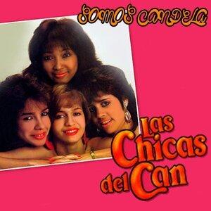 Las Chicas Del Can 歌手頭像