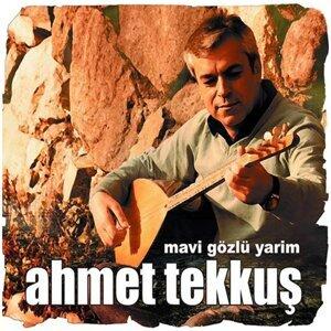 Ahmet Tekkuş 歌手頭像