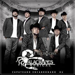 Alacranes Musical 歌手頭像