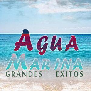 Agua Marina 歌手頭像