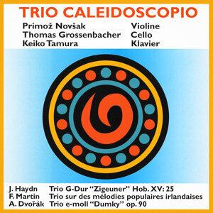Trio Caleidoscopio 歌手頭像