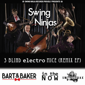 The Swing Ninjas
