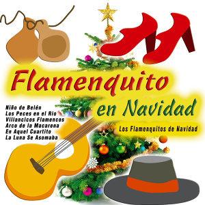 Los Flamenquitos de Navidad 歌手頭像