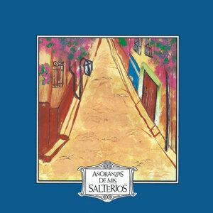 Los Salterios Del Tiempo / Quinteto Del Recuerdo 歌手頭像