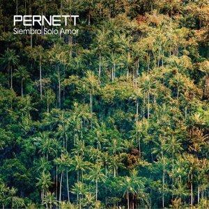 Pernett 歌手頭像