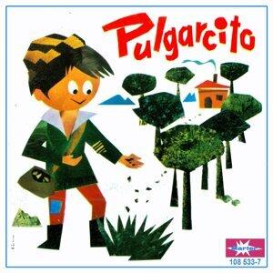 Pulgarcito 歌手頭像