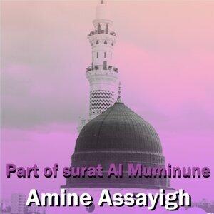 Amine Assayigh 歌手頭像