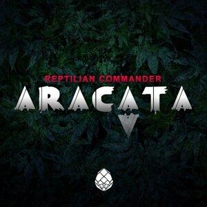 Reptilian Commander