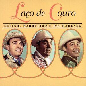 Sulino, Marrueiro e Douradense 歌手頭像