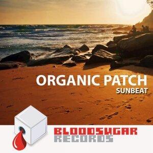 Organic Patch 歌手頭像