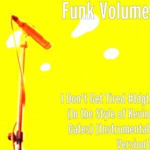 Funk Volume 歌手頭像