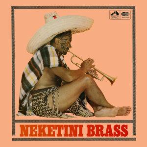 Nick Nicholson & The Neketini Brass 歌手頭像
