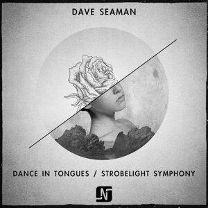 Dave Seaman (戴夫海人) 歌手頭像