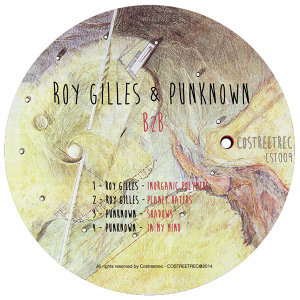 Roy Gilles & Punknown 歌手頭像