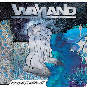 Wayland 歌手頭像