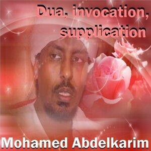 Mohamed Abdelkarim 歌手頭像