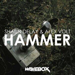 Shaun Delay, Alex Volt 歌手頭像