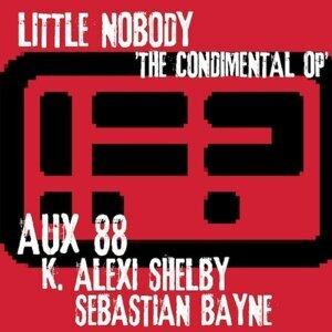 Little Nobody 歌手頭像