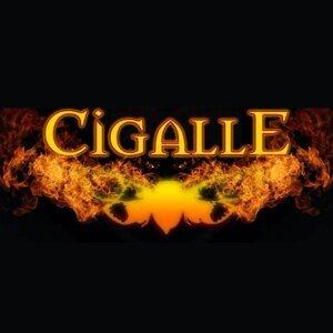 Cigalle 歌手頭像
