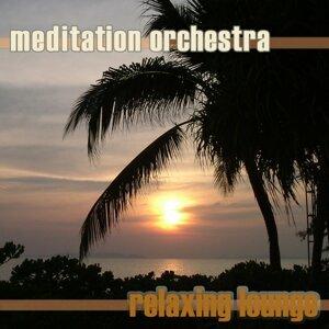 Meditation Orchestra 歌手頭像
