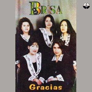 Brisa 歌手頭像