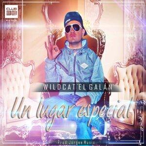 "Wildcat """"El Galan"""" 歌手頭像"