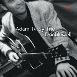 Adam Tvrdý Trio 歌手頭像