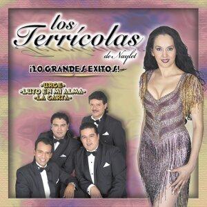 Los Terricolas De Naylet 歌手頭像