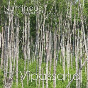 Numinous 歌手頭像