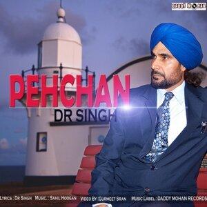 D. R. Singh 歌手頭像